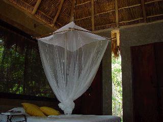 bedroomnet.jpg